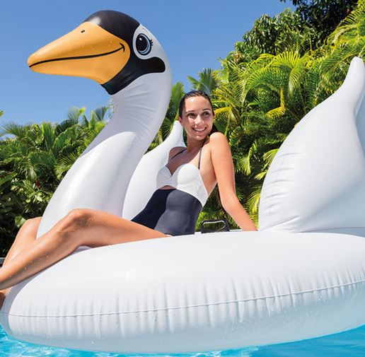 Cisne hinchable Intex